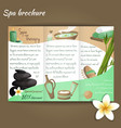 Spa salon brochure vector image vector image