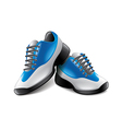 sport shoes isolated vector image vector image