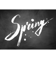 Spring word chalked lettering vector image vector image
