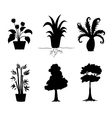 Tree Plants Silhouettes Collection vector image vector image