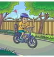 Young boy riding a bicycle on street vector image vector image