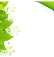 Eco Background With Green Leaves vector image