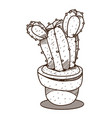 cactus in a pot outline drawing for coloring vector image vector image