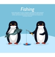 Fishing Banner Penguin Animals on Fish vector image