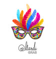 mardi gras mask with feathers on white background vector image vector image
