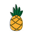 pineapple tropical fruit health nutrition food vector image