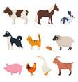 Set farm animals on white background