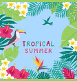 summer time hand drawn tropic background vector image vector image