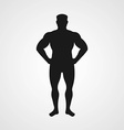 Silhouette of sporting men vector image