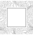 chrysanthemum outline flower banner card vector image vector image