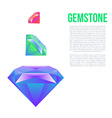 Colorful gem isolated on white background vector image