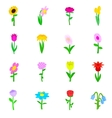 Flower icons set isometric 3d style vector image vector image