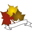 Maple Caption Ribbon vector image vector image