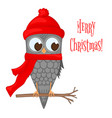 owl on the branch in the santa claus hat and scarf vector image vector image
