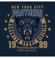 Panther Sport t-shirt graphics vector image vector image