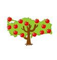 patriotic apple tree turkey map apples turkish vector image vector image