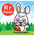 R Rabbit color cartoon and alphabet for children vector image vector image