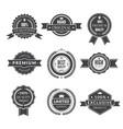 vintage template monochrome premium labels vector image