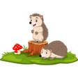 cartoon two bahedgehog on tree stump vector image vector image