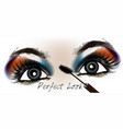 female eyes with make up fashion perfect look vector image