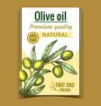 natural freshness olive tree branch poster vector image