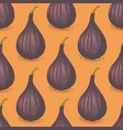 seamless pattern with ripe whole fig vector image vector image