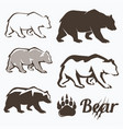 set of walking bear silhouettes in different vector image vector image