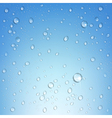 water droplets vector image vector image