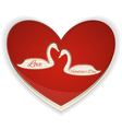 Valentines Heart with Swans vector image