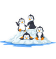 group funny penguins playing on ice floe vector image vector image