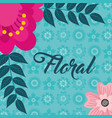 pink flower branches natural floral background vector image