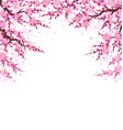 spring background with plum blossom branches vector image vector image