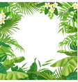 summer background with tropical plants vector image vector image
