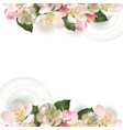 template with flowers apple tree vector image vector image