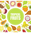 tropical fruits banner template with fresh ripe vector image vector image