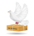 white pigeon flying with air shipping delivery vector image