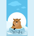 groundhog day marmot makes forecast winter vector image vector image