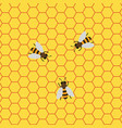 honey background with bees working on a honeycomb vector image