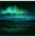northern lights aurora borealis realistic vector image