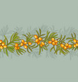 sea buckthorn pattern vector image vector image