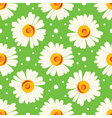 Seamless pattern with white chamomiles and dots on vector image