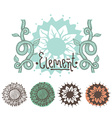 Set of color floral elements Flowers branches vector image vector image