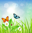 Spring Background with Grass vector image vector image