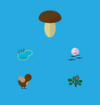 Flat icon nature set of champignon bird gull and