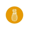 Icon Pineapple in the Contours vector image vector image
