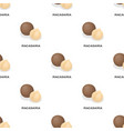 macadamiadifferent kinds of nuts single icon in vector image vector image