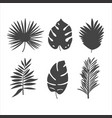 set 6 simple flat silhouette tropical vector image