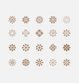 set golden abstract flower symbols vector image vector image
