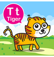 T Tiger color cartoon and alphabet for children to vector image vector image