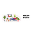 woman taking care houseplants housewife vector image vector image